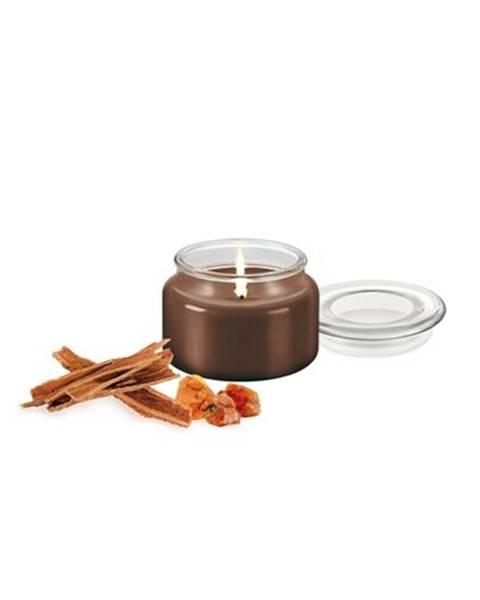 Hnedá sviečka Tescoma
