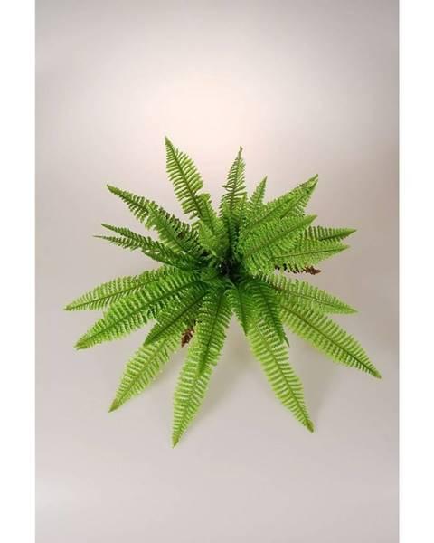 Zelená váza Veba