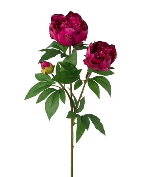 Ružová váza Kvalitex