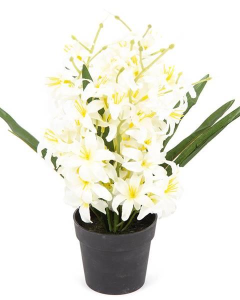 Biely kvetináč Fieldmann