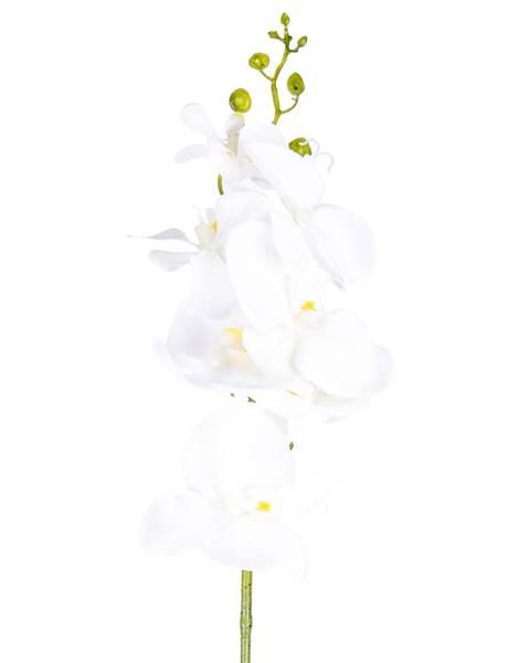 Biela váza Vigan