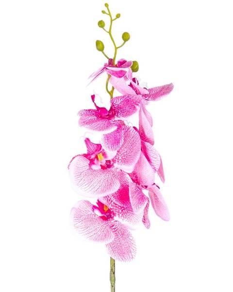 Ružová váza Gardinia