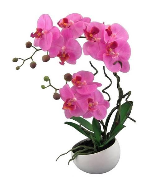 Ružový kvetináč Gardinia
